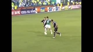 Após 12 anos, o Palmeiras voltou a conquistar o título paulista. Em 2008, com um time forte, o Palmeiras chegou até as finais do campeonato e encarou a Ponte ...