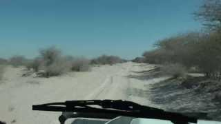 Kalahari Botswana  City pictures : Self Drive Camping in Central Kalahari Game Reserve Botswana