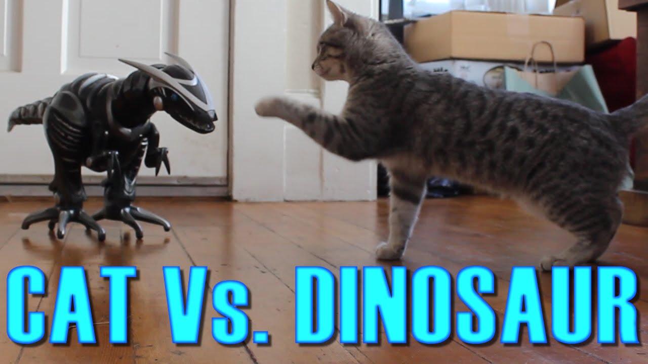 Кот против динозавра