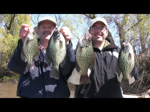 Nice crappies