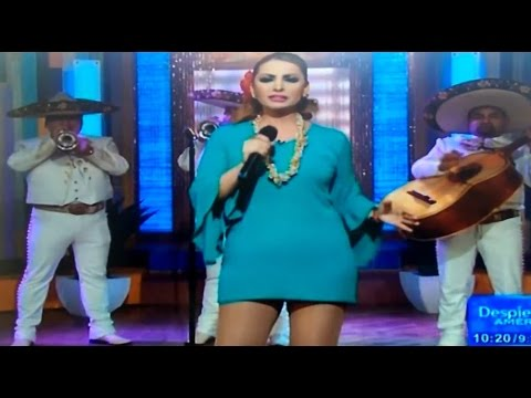 Mexican singer Patricia Navidad accidentally dropped her menstrual pad while singing a song