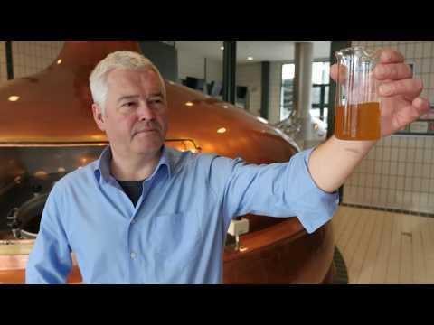 Vorarlberger Bio Bier: Einbrauen mit 100 % Vorarlberger ...