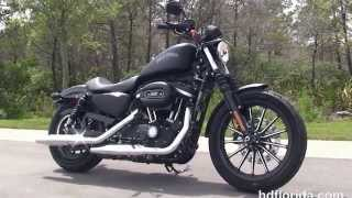 8. New 2014 Harley Davidson Iron 883 Motorcycles for sale - 2015 coming soon