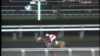 RACE 9 COLONIAL STAR 11/29/2014