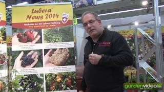 #220 Spezial Information about new breeding varieties 2014