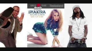 Shakira - Give It Up To Me (feat. Timbaland & Lil Wayne) (Disco Fries Remix)