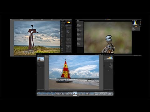 5 Differences Between Lightroom, Luminar, and On1