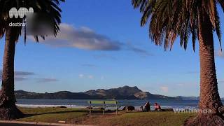 Coromandel New Zealand  City new picture : The Coromandel, New Zealand