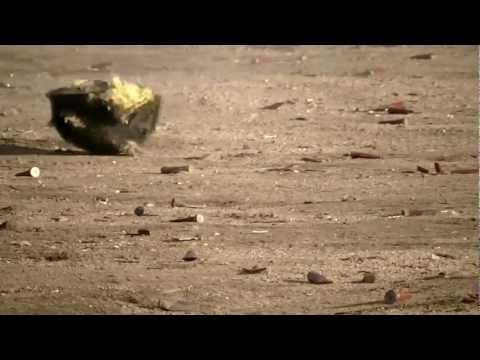 Kevlar Helmet Test Shoot