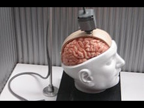 directly - The plan is to have the internet wired directly into your brain and offer humans the ability to be trans-humanist cybernetic Gods. http://www.Facebook.com/Ma...