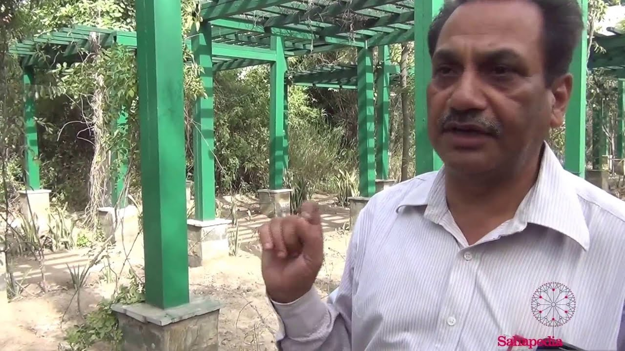 Walkthrough of Herbal Garden, Yamuna Biodiversity Park