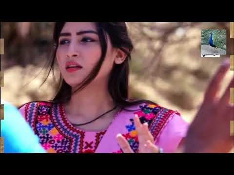 Video Bhalin Toon Ghumy Jo Mithoo Sindh Sari   Samina Koial Marwadi Thari Lok Geet   Copy download in MP3, 3GP, MP4, WEBM, AVI, FLV January 2017