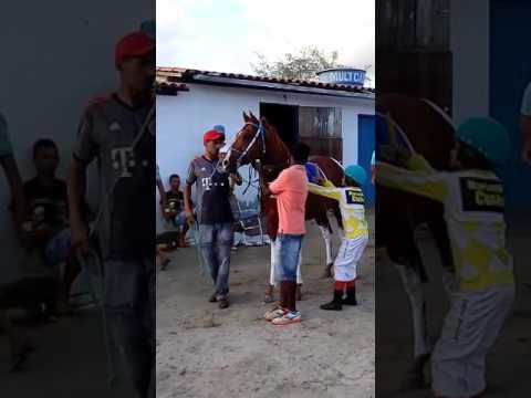 Corrida de cavalo em goiabeira Ba 21-05-2017