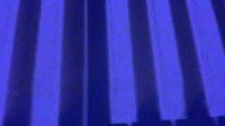 Video UF Promo video
