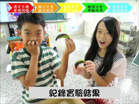 高雄市_景義國小_莊心怡_教學影片