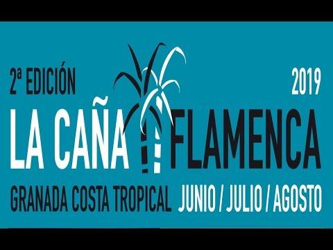 La caña Flamenca