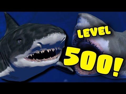 CÁ MẬP BẤT TỬ  LEVEL 500 VỚI 50000 MÁU - Feed And Grow : Fish #11 | POBBrose ✔ - Thời lượng: 25:48.
