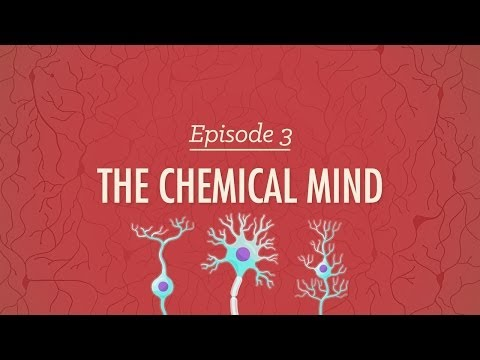 The Chemical Mind – Crash Course Psychology #3