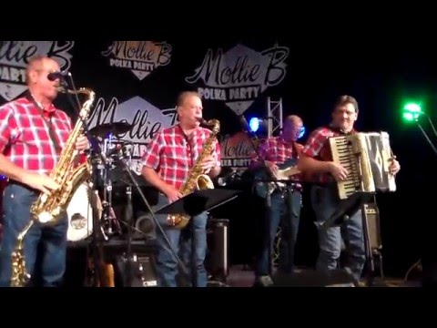 RED RAVENS POLKA BAND - ENNIS, TX. 04-29-2016