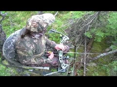 Becky's bear Senneterre outfitters bow hunt