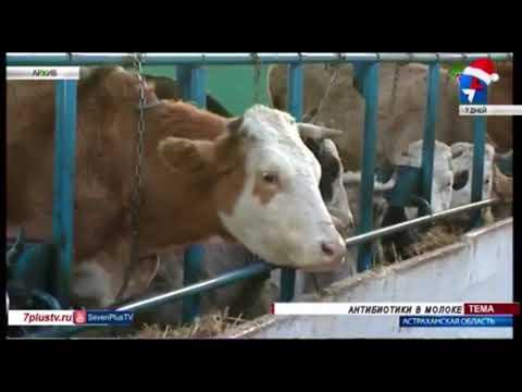 О выявлении в Астраханской области антибиотика в сметане и кефире