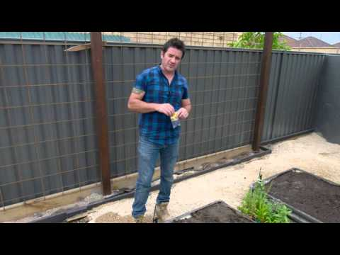 Installing Jet Sprinkler | The Home Team 2 Ep. 42