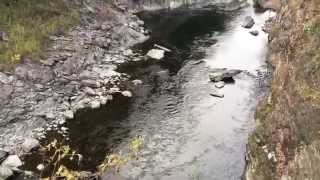 Quechee (VT) United States  City new picture : Quechee Gorge