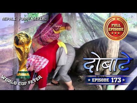 (Dobate Episode 173 - दोबाटे भाग १७३ - Nepali Comedy Serial - 22 -06 - 2018 - Duration: 24 minutes.)