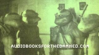 Teenage Mutant Ninja Turtles novelization (unabridged audiobook)