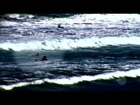 Bondi Rescue Season 7 Episode 8 Part 2/2