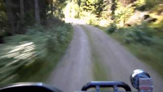 7. a speed run with arctic cat 700
