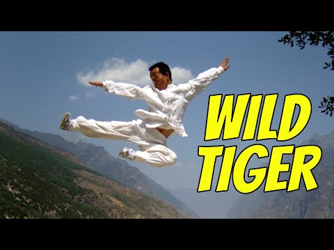 Wu Tang Collection - Wild Tiger