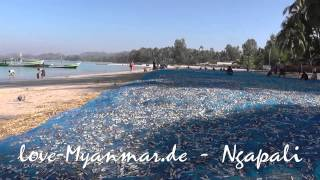 Ngapali Myanmar  City pictures : Ngapali Beaches 2015 [travel-Myanmar.de]