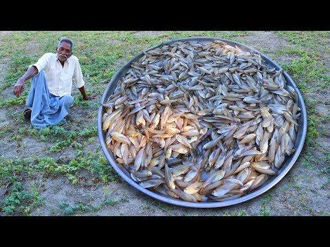 1000 Sea Fish Curry Recipe   Traditional Small Fish Recipe by Grandpa Kitchen - Thời lượng: 10 phút.