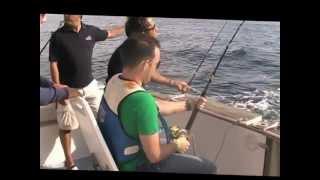 Video Atuns em Cascais 10 Outubro 2012 MP3, 3GP, MP4, WEBM, AVI, FLV Desember 2017