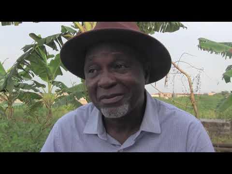 COTE D'IVOIRE : INTERVIEW  DES PROBLÈMES DE CHEFFERIE A DABOU  ET DU VILLAGE TIAHA