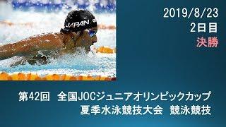 第42回JOCジュニアオリンピック夏季2日目決勝
