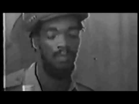 Video Earl