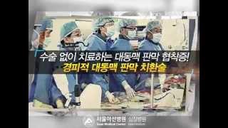 경피적 대동맥 판막 치환술 미리보기