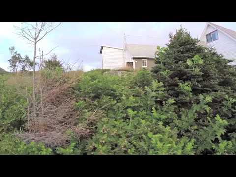 St. John's Drone Video