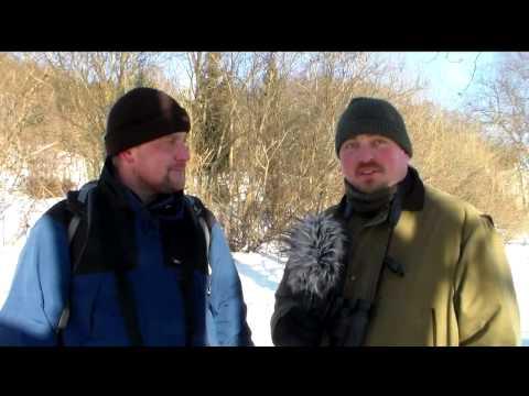 Ptakoliczenie - zima 2014