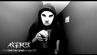 Video Angerfist @ EDC Las Vegas 2014 (LIVESET) MP3, 3GP, MP4, WEBM, AVI, FLV November 2017