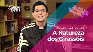 Padre Reginaldo Manzotti - A Natureza dos Girassóis