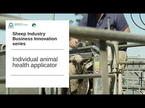 Individual animal health applicator   Department of Primary Industries and Regional Development