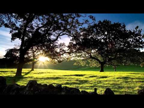 Early Dawn  Catherine Anderson  Chapters 1   5  Audio Books #English #Audiobook