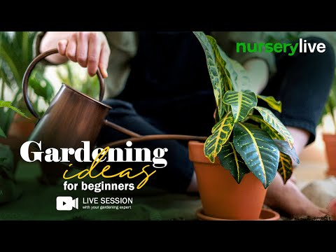 Gardening AtoZ | Ep. 1| Gardening Ideas for beginners | nurserylive