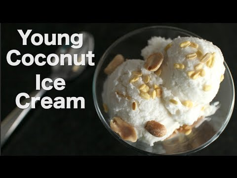 Young Coconut Ice Cream – Hot Thai Kitchen ไอติมกะทิ