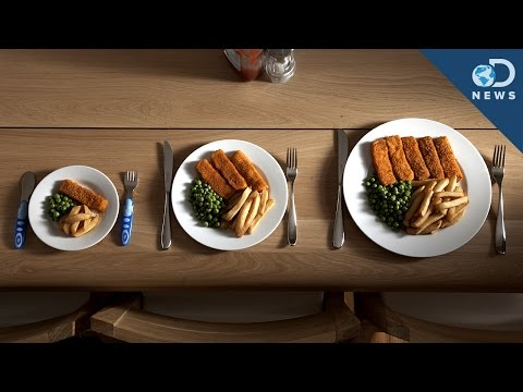 the factors leading to the huge food portions in america It has become a growing problem among children due to several factors that lead to becoming a big problem in america america: fast food.