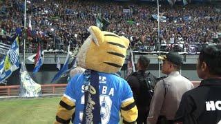 Video Kapolrestabes Sby bersama Maskot Persib Simba menyapa Bobotoh Viking di Tribun Stadion GBT Sby MP3, 3GP, MP4, WEBM, AVI, FLV September 2018