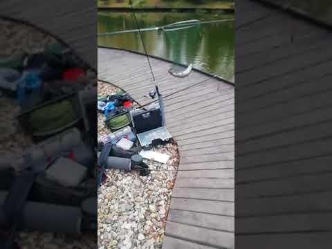Видеоотчет о рыбалке за 13 октября 2021 г.